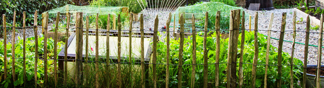 Staketenzaun als Gartenzaun